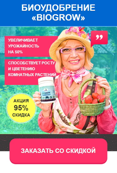 купить агромакс в украине